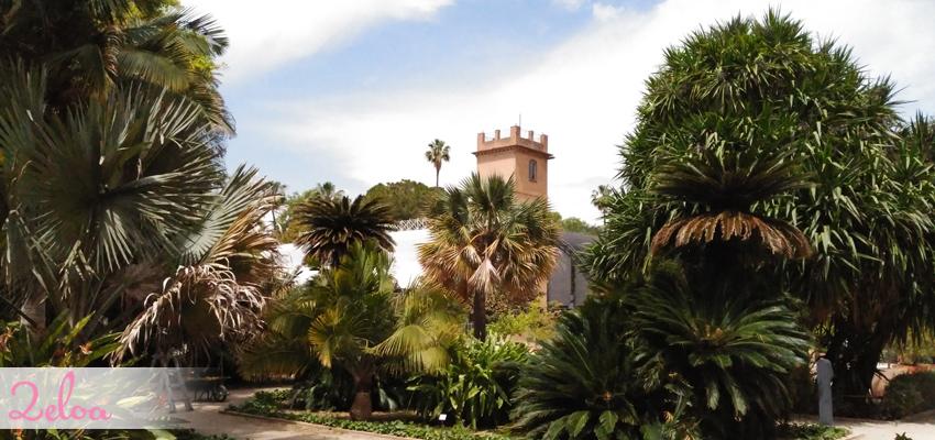 Jard n bot nico de valencia disfr talo con ni os 2eloa - Jardin botanico valencia ...
